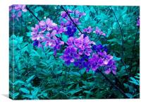 Purple and Green, Canvas Print