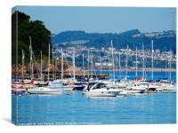 Brixham Harbour                         , Canvas Print