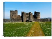 Caerphilly Castle                    , Canvas Print