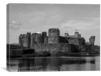 A Castle to be Proud of , Canvas Print