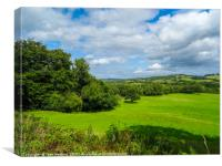 Welsh Countryside, Canvas Print