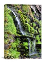 St Catherine's Tor Waterfall, Canvas Print