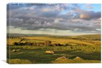 Summers Evening on Dartmoor, Canvas Print