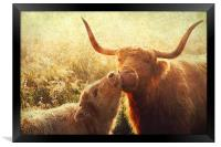 Mammy Love. Highlands Trossachs. Scotland, Framed Print