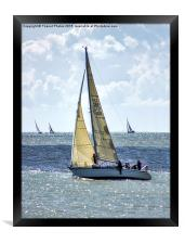 Yachts racing, Framed Print