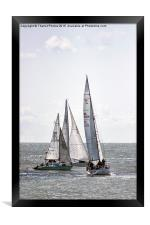 Yachts racing , Framed Print
