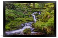 Venford Brook - Dartmoor, Framed Print
