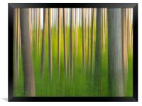 Abstract Forest., Framed Print