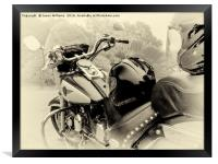Born To Live, Live To Ride, Framed Print