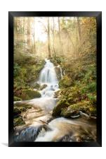 A Woodland Walk by the Waterfall, Framed Print