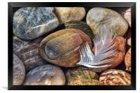Feather and Pebbles, Framed Print