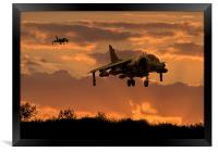 Hunting Harriers, Framed Print