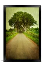 Country Road, Framed Print
