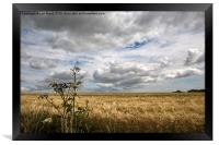 Clouds over Wheat Field, Framed Print