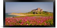 The Castle and the Campion, Framed Print