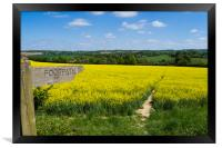 Footpath Sign to pathway through rapefield , Framed Print