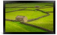 Swaledale Barns and stone walls, Framed Print