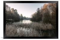 Hoar Frost at Virginia Water Lake, Framed Print