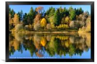 Autumn colours on Penicuik Pond 2016, Framed Print