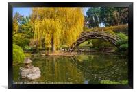 The beautiful fall colors of the Japanese Gardens, Framed Print