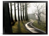 Tree Shadows on the Lane  North Norfolk, Framed Print