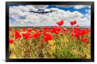 Poppy field and clouds, Granada Province, Spain, Framed Print