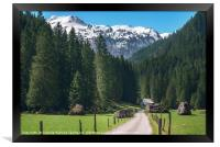 Road toward the green forest and the Swiss Alps. S, Framed Print