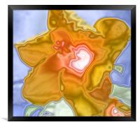 Hibiscus abstract, Framed Print