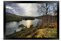 Glen Affric in Winter, Framed Print