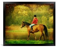 A Gentle Canter, Framed Print