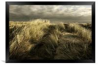 peeping over the dunes, Framed Print