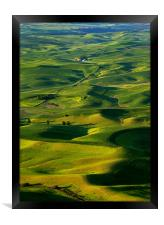 Palouse Morning, Framed Print