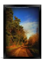 Pond Hills Road 7, Framed Print