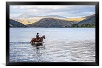 Horse at Airds Bay Loch Etive, Framed Print