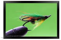 Salmon fly in vice, Framed Print