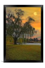 THE WIND AND THE WILLOWS, Framed Print