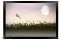 ABOVE THE TALL GRASS, Framed Print