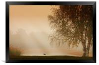 MISTY MORNING BEAUTY, Framed Print