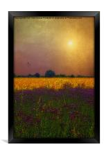 SUNSET IN THE MEADOW, Framed Print