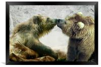 Bearkiss, Framed Print