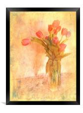 Tulip Time, Framed Print