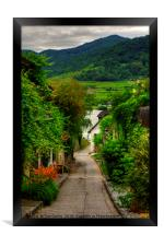 Path to the Danube, Framed Print