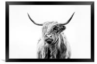 Portrait of a Highland Cow, Framed Print
