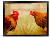 Hen Party, Do You Come Here Often?, Framed Print