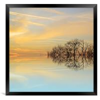Heavenly branches, Framed Print
