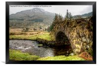 Butterbridge, Framed Print