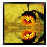 (Sunflower)- A Reflection of a Summer Day 2, Framed Print