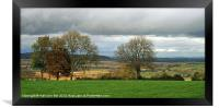 COTSWOLDS COUNTRYSIDE., Framed Print