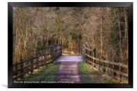 Along the Cycle Path, Framed Print