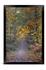 Autumn Footpath, Framed Print